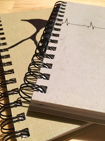 In this photo there are two spiral notebooks--one with a heart monitor reading on the cover, another decorated with a penguin illustration.